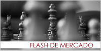 ENLACE FLASH